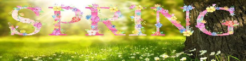 spring-newest-.jpg